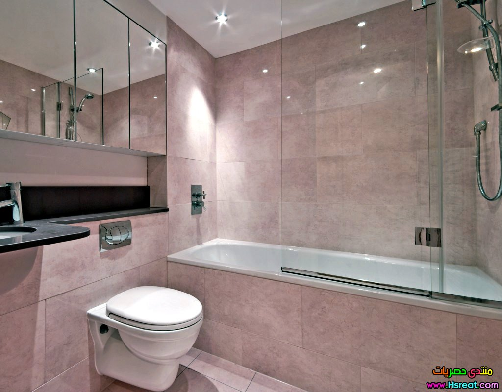 Black And Pink Bathroom