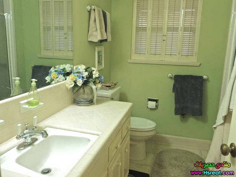 green-bathroom-color-ideas-photo.jpg